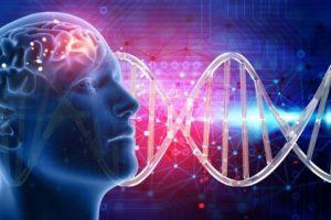 Reflexiones: Nuestro origen. Ciencia, mitos y creencias