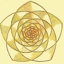 pentaflor compendio de geometria sagrada i174663