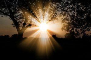 sun 3130638 640 soledad una parte necesaria del sendero un mensaje de jeshua i224561