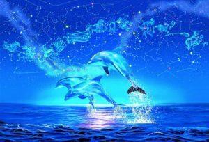 dolphins rayo azul definitiva actualizada con aurelia l jones i226728