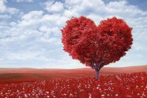 Maitri: como desarrollar amor incondicional hacia uno mismo