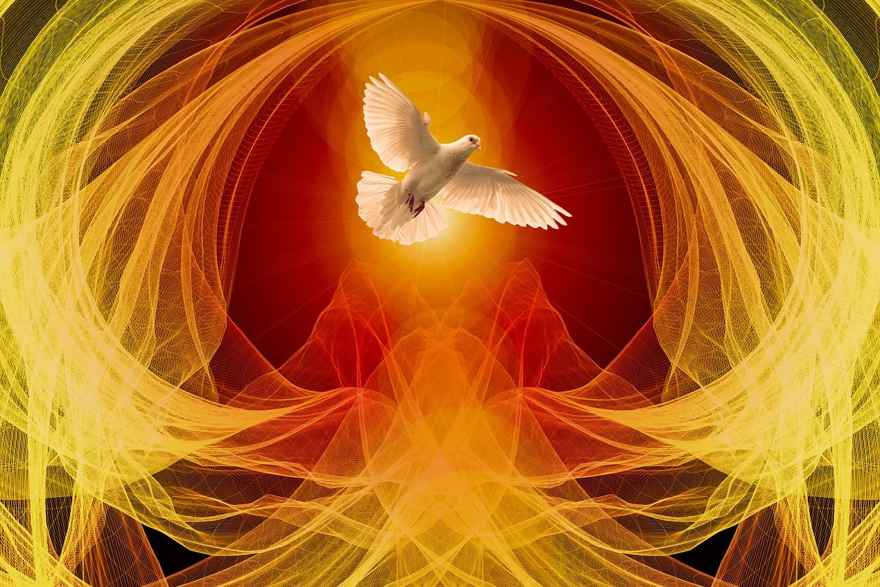 dove 4191376 1280 1 la voz del espiritu llama mensaje del arcangel miguel i228370