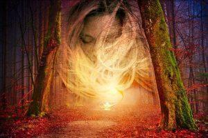 forest 4022496 640 la humanidad plena de luz como nunca un mensaje de jesus i230072