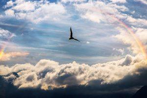 sky 4850411 640 eleva tu conciencia divina cambiando todo lo que conoces i230003
