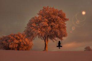 tree 3151608 640 este es el momento de despertar un mensaje del arcangel miguel i233226