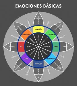 Emociones la tabla ciclica de las emociones i235081