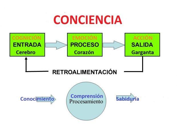 procesamiento datos informacion