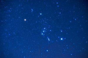 11 tipos de semillas estelares: ¿cuál es el tuyo?