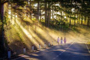 Es normal tener dudas sobre el camino, por el Alto Concilio de la Luz