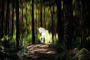 unicorn forest fantasy picture photomontage quienes son los emisarios pleyadianos de la luz i327447