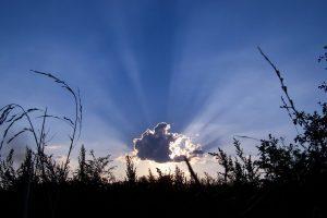 Afinando tu conciencia espiritual: por el Arcángel Miguel