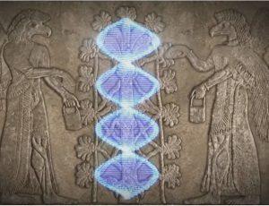 egipto adn matrix revelacion revolucion y resurreccion i374965