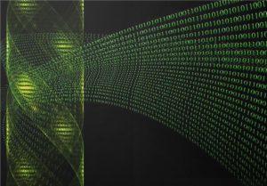 genetica binaria matrix revelacion revolucion y resurreccion i374965